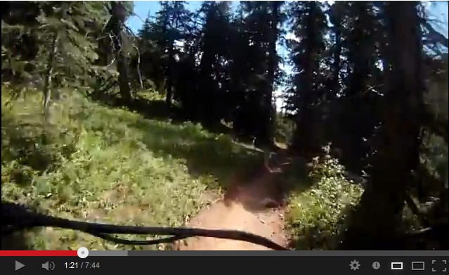 crested butte mountain bike trail video