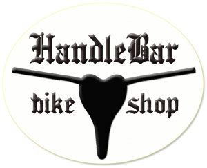 crested butte downhill mountain bike rental shop